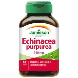 Echinachea Purpurea Jamieson
